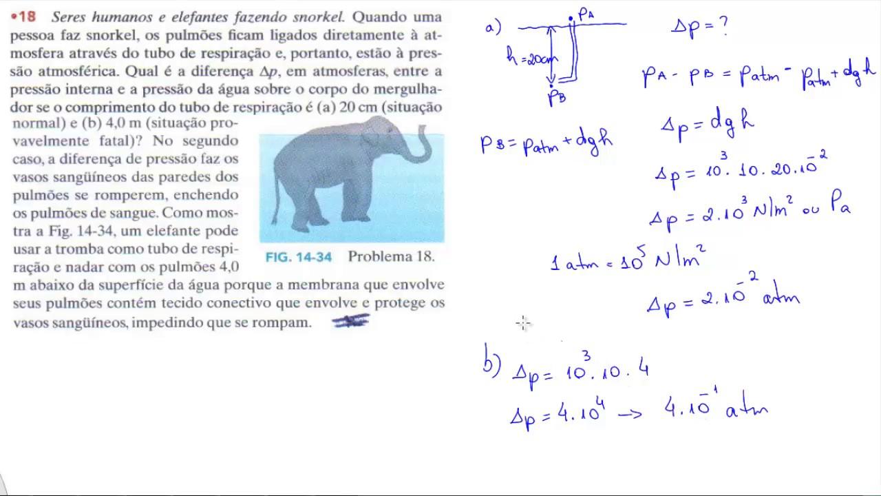 Verificação da Lei de Arquimedes - NotaPositiva