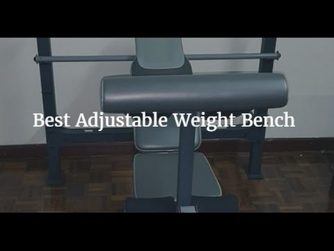 bench weight reviews guide comparison adjustable best