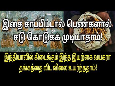 இந்தியாவில்-இந்த-பொருள்-தங்கத்தை-விட-விலை-உயர்ந்தது!-|-tamil-viral-video-|-tamil-health-tips