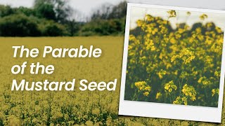 The Parable of the Mustard Seed | February 21st, 2021