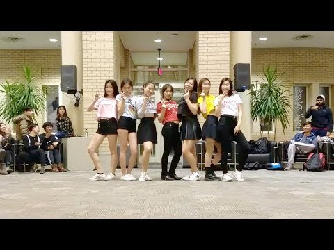 [BLACKPINK] AS IF ITS YOUR LAST Dance Cover @ Waving Flags 2017