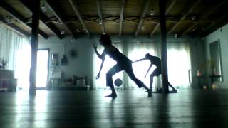 zen tai chi mini sequence from full class