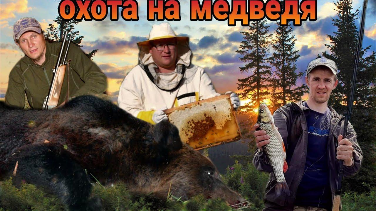 Пять медведей вышли к лабазу - охота и рыбалка выходного дня