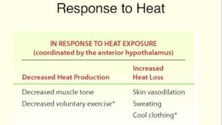 MedSci - Thermoregulation - Lecture 2