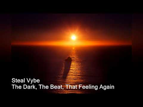 Steal Vybe - The Dark, The Beat, That Feeling Again