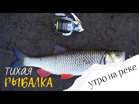 Неожиданный улов! Красивая рыбалка на тихой реке.