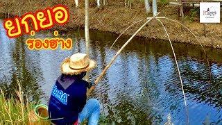 ยกสะดุ้งปลาเยอะ หมานเกินคาด Fishing lifestyle Ep.40
