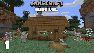 Minecraft: A New World - Survival Let's play | Ep 1