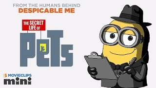 Movieclips mini: the secret life of pets – brian the minion (2015) minion movie hd