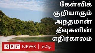 அதிகரிக்கும் கடல் மட்டம்; அந்தமானுக்கு ஆபத்து | Climate change