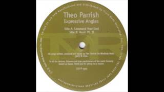 Theo Parrish - Command Your Soul (Vinyl Expressive Angles)