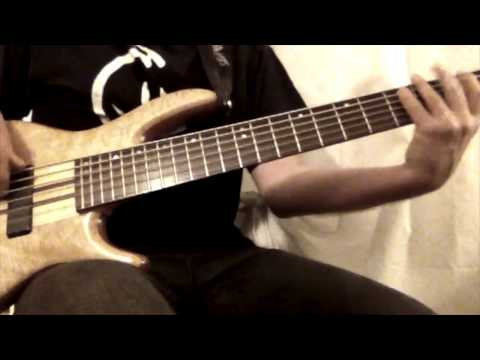 Voyager - Daft Punk - Bass Cover by Schuller