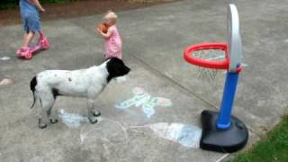This 15 Month Old Is Better At Basketball Than You Will Ever Be!! NBA Next Rookie Of The Year !!