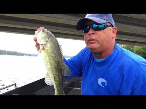 High Rock Lake NC. -  Bass Fishing With A Hush Hush Top Water Lure Action.