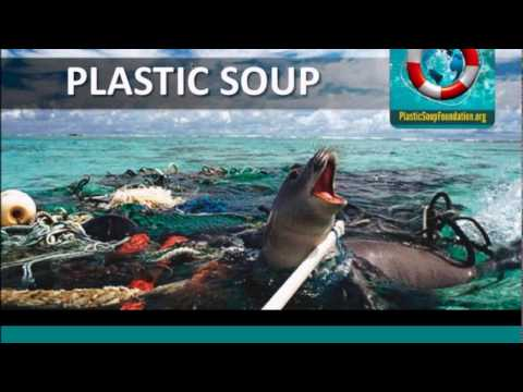 E4C Webinars l Empowering Citizens Through Technology to Reduce Marine Plastic Pollution