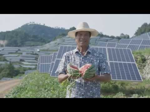 JinkoPower 20MW agricultural PV power plant in China