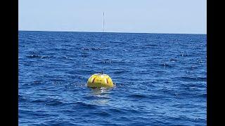 CDIP 41117  Buoy Deployment 28…