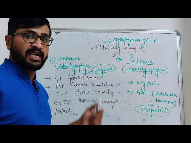 D-PHARMACY PART I    |HAP|   PITUITARY GLAND