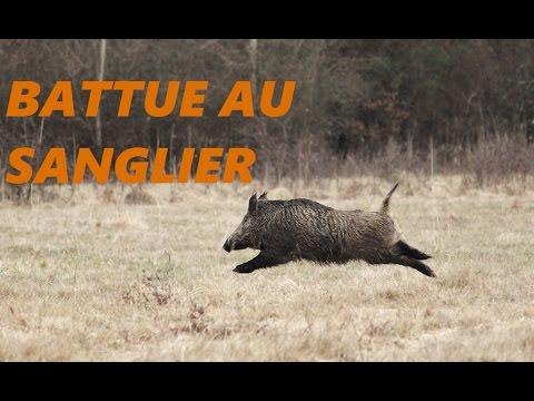 Battue Au Grand Gibier Tir De Mon Premier Sanglier Caméra Contour Roam2