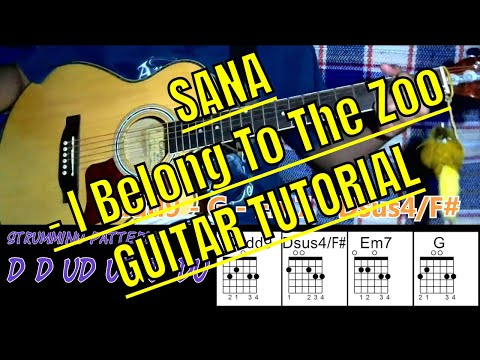 Sana by I Belong To the Zoo | Guitar Chords | Tutorial