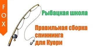 Російська Рибалка 4, краща збірка спінінга для Куори