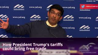 Dinesh D'Souza: Milton Friedman is 'politically dumb' on Trump's trade tactics