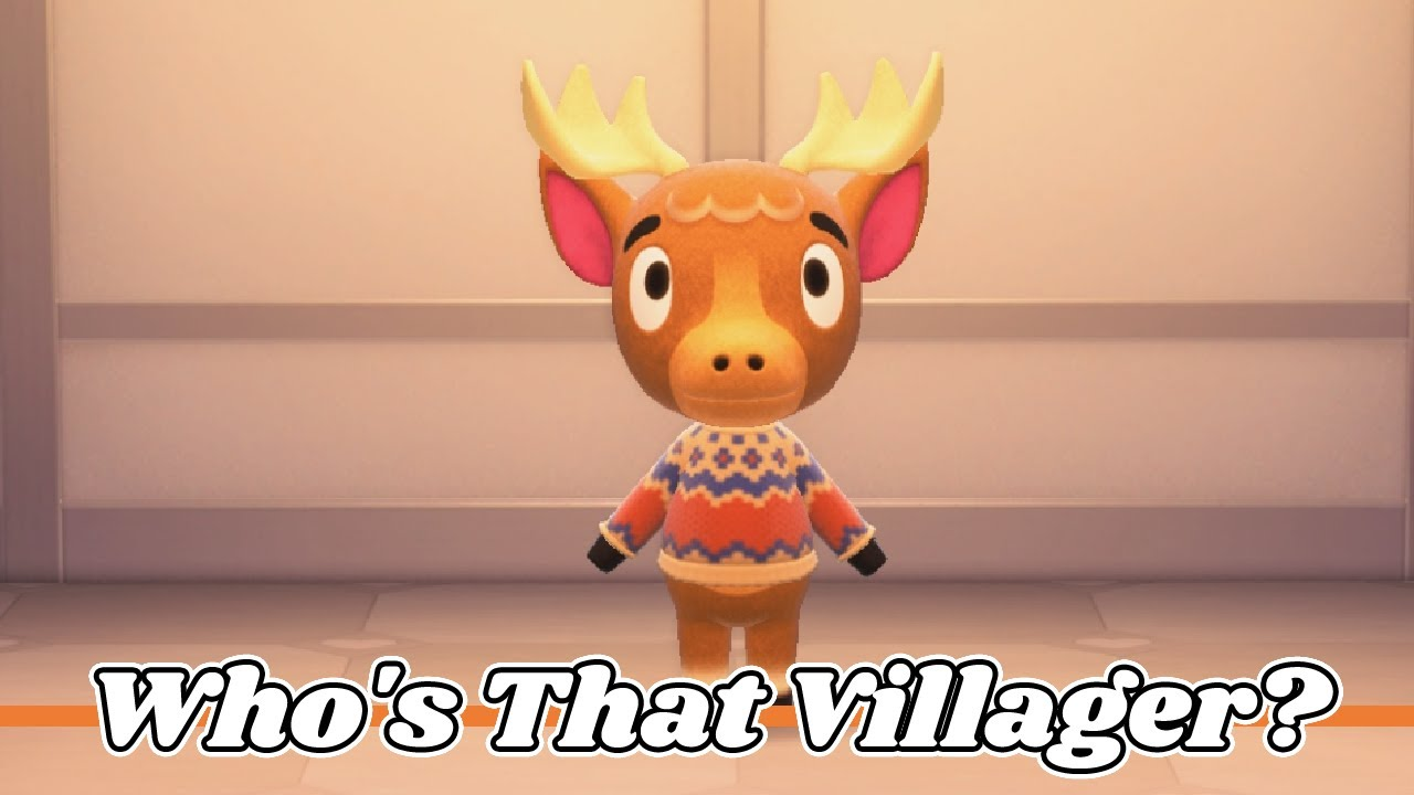Who's That Villager - Erik