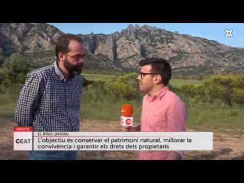 Connecti.cat - El Bruc regula el trànsit als peus de Montserrat