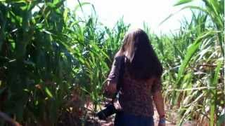Beautiful wife in tight jeans and kids and Corn Maze 004.MP4