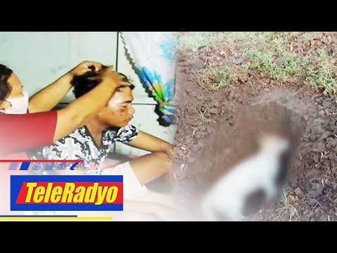 Magsasaka, aso patay matapos tamaan ng kidlat sa Batangas; 7