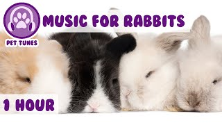 Music for Bunny Rabbits - Calming Music for Your Pet Rabbit.