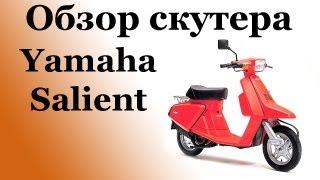 Обзор скутера yamaha salient