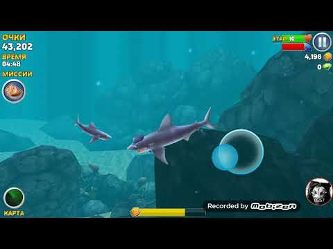 Я акула 🦈 ту ру ру ру - YouTube