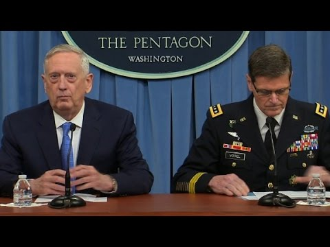 Entire Pentagon report on Syria attack