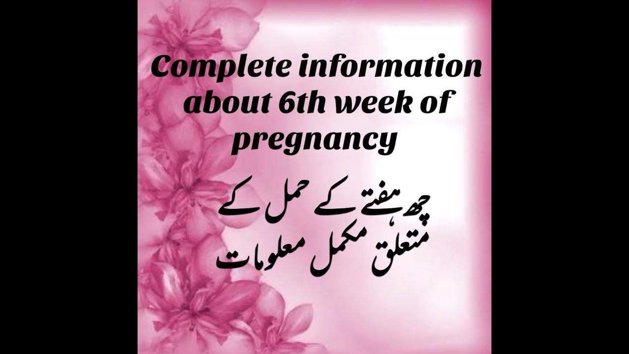 Pregnancy symptoms 6 week 6 DPO: