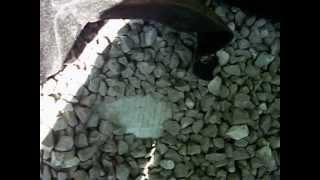 Seat/planter Walls - Drainage