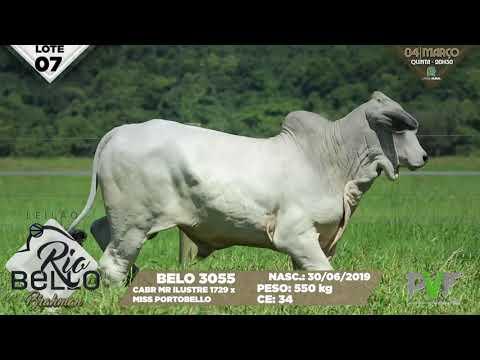 LOTE 07   BELO 3055