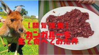 今回はカンガルーのお肉を焼かずに生で食べてみました! オーストラリア...