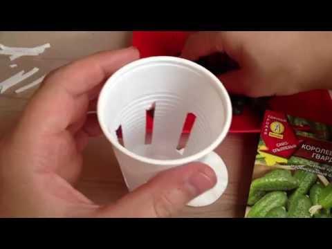 видео: ВЫРАЩИВАНИЕ СЕМЯН И РАССАДЫ В ГИДРОПОНИКЕ