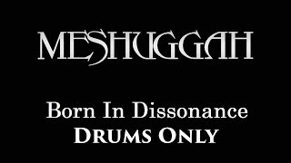 Meshuggah Born In Dissonance DRUMS ONLY
