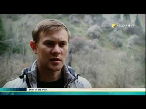 Spirit of the wild №1 (13.06.2017) - Kazakh TV