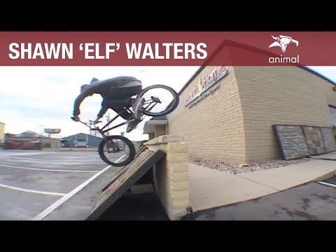 BMX - ANIMAL BIKES: SHAWN 'ELF' WALTERS