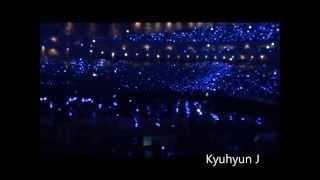 [FANCAM] 20130728 SS5 IN JAPAN TOKYO SAPHIRE OCEAN - AMAZING ELF (SUPER JUNIOR SUPER SHOW 5)