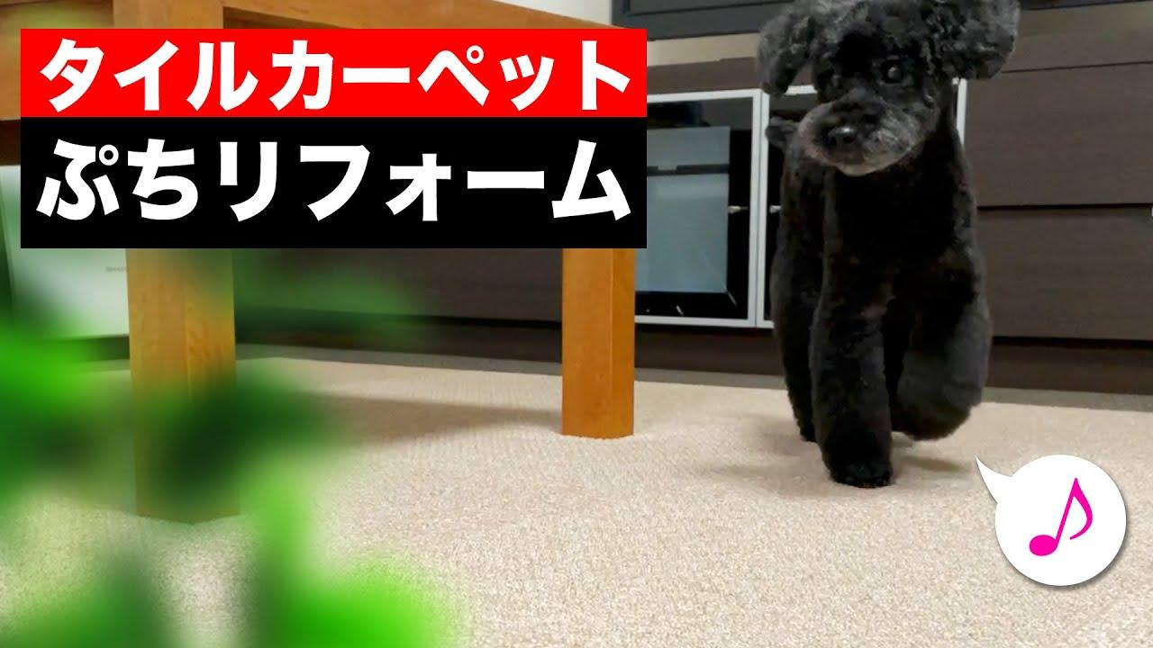 日本製の 東リ 吸着式タイルカーペットが、ペットや子供のいる家庭に超オススメ!【1年レビュー】