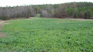 House & Hunting Land for sale in GA .wmv