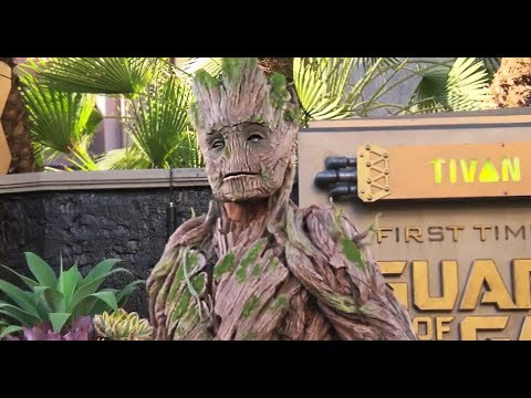 NEW Full-size Groot character meet-and-greet debuts at Disneyland from 'Guardians of the Galaxy'
