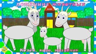 Учим животных:  козёл, коза, козлёнок! Развивающие мультфильмы о животных
