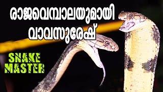Vava Suresh captures his 70'TH King Cobra | Snake Master - Episode-57 - Kaumudy TV