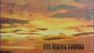 The Rising Sounds - Teach Your Children (1971)