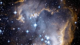 who owns space rif 93